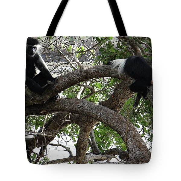 Colobus Monkeys Sitting In A Tree Tote Bag
