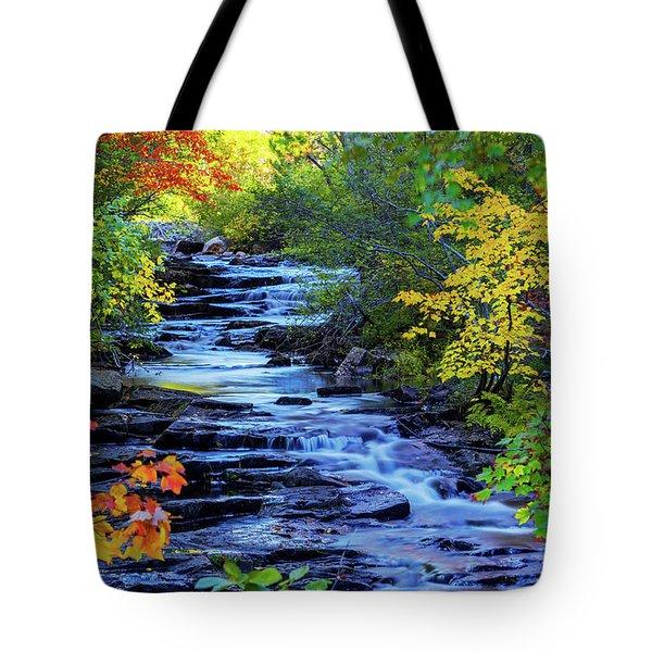 Color Alley Tote Bag