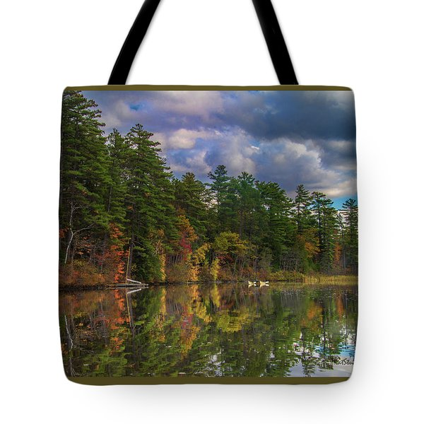 Color At Songo Pond Tote Bag