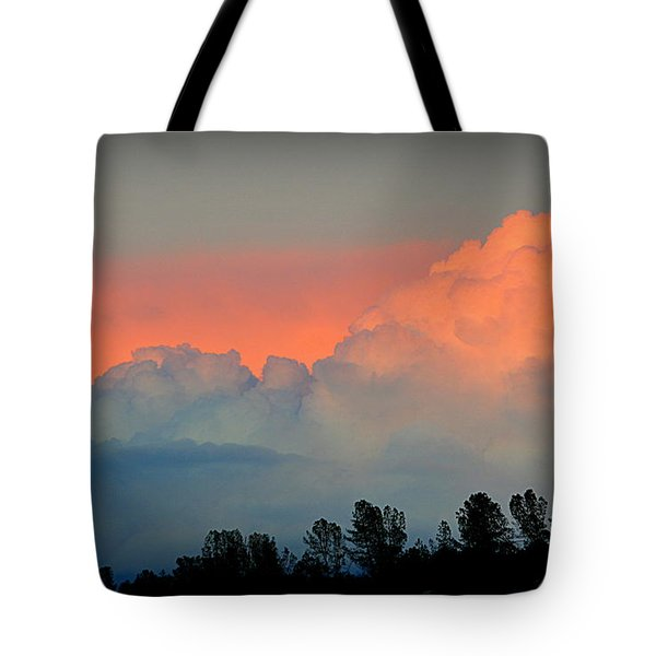 Tote Bag featuring the photograph Color Burst by AJ Schibig