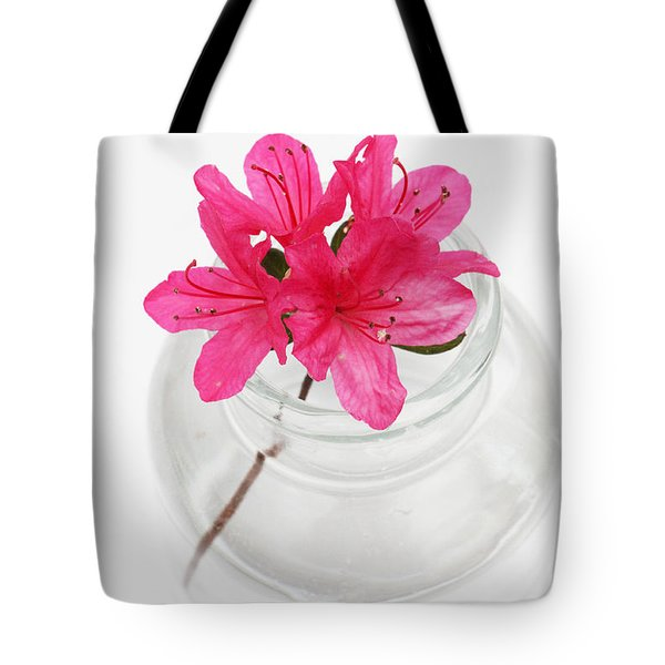 Color Full Of Life Tote Bag by Amanda Barcon