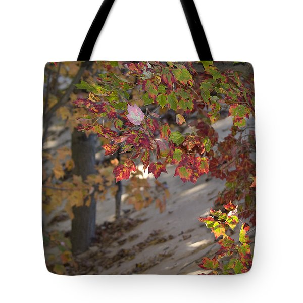 Color In The Dunes Tote Bag