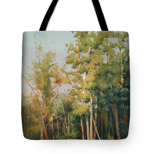 Color Of Light Tote Bag