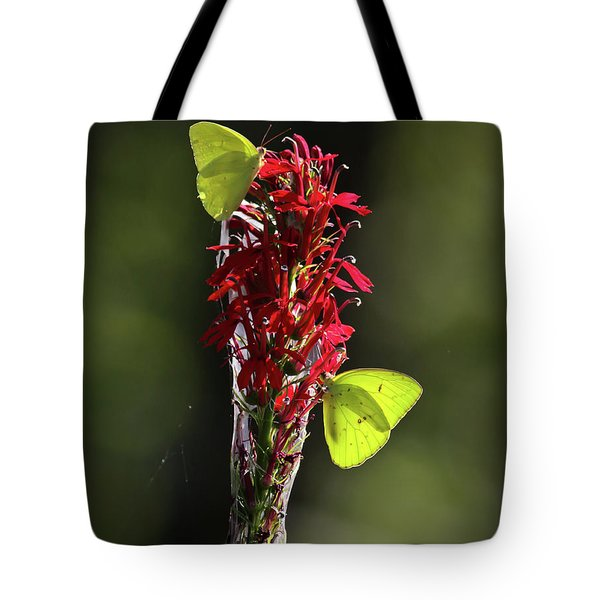 Tote Bag featuring the photograph Color On Citico by Douglas Stucky