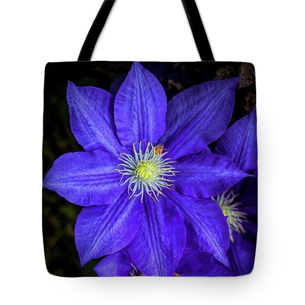 Color Me Purple Tote Bag