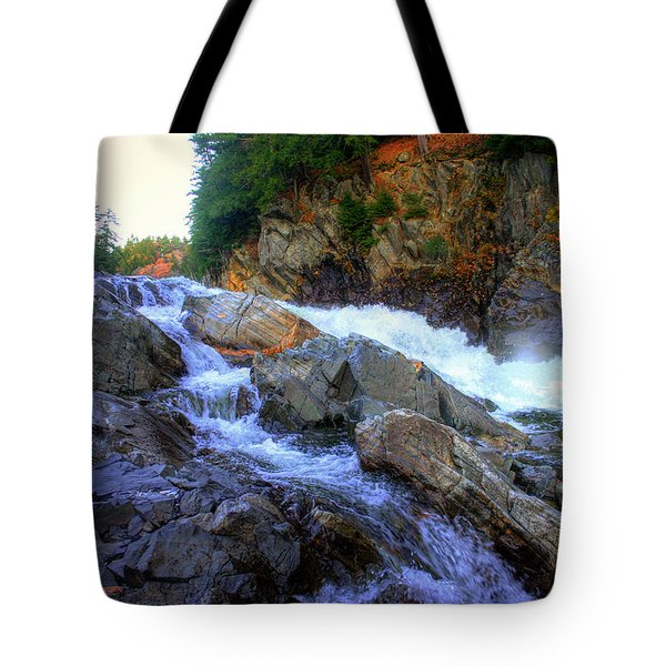 Color Steps At Livermore Falls Tote Bag