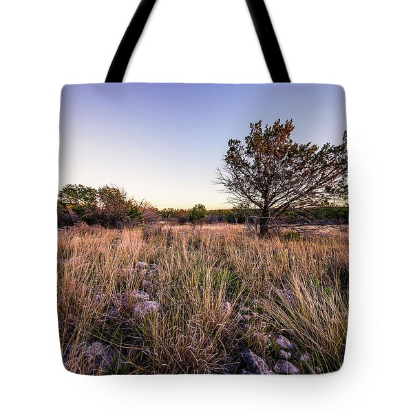 Colorado Bend State Park Gorman Falls Trail #2 Tote Bag by Micah Goff