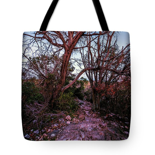 Colorado Bend State Park Gorman Falls Trail #3 Tote Bag by Micah Goff