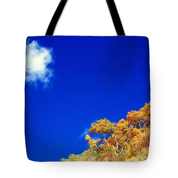 Colorado Blue Tote Bag by Karen Shackles