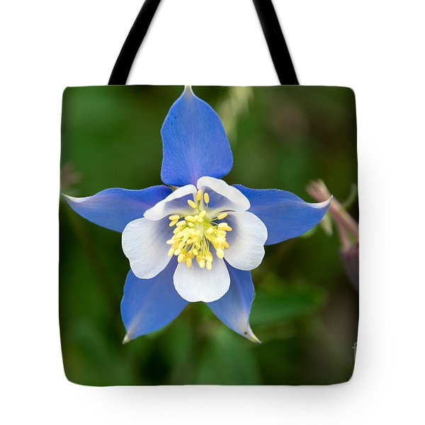 Colorado Blue Tote Bag by Sandy Molinaro