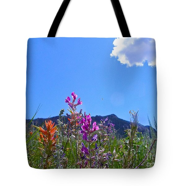Colorado Colors Tote Bag