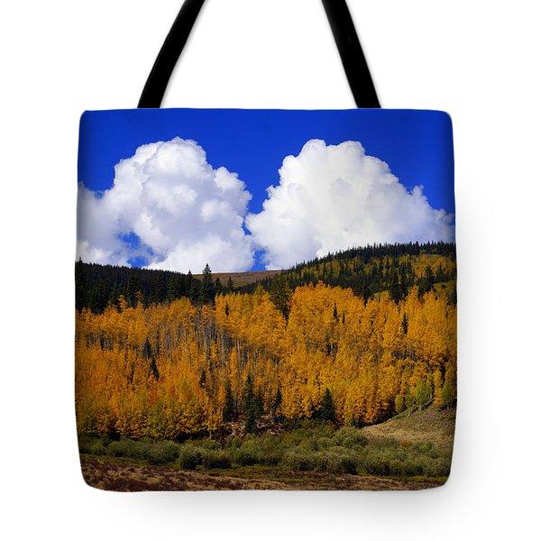 Colorado Fall 2 Tote Bag by Marty Koch