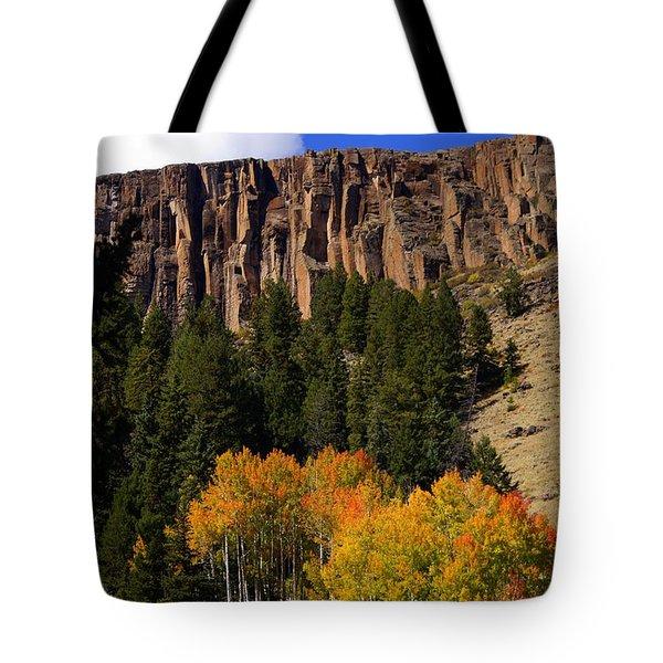 Colorado Fall 4 Tote Bag by Marty Koch