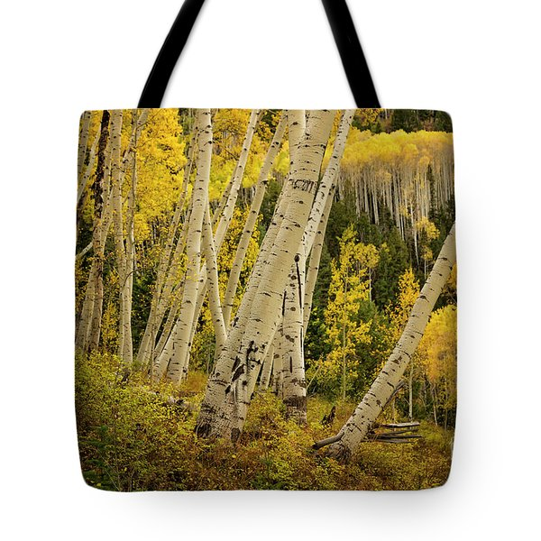 Colorado Fall Aspen Grove Tote Bag