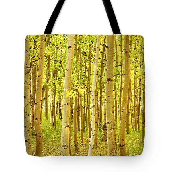 Colorado Fall Foliage Aspen Landscape Tote Bag by James BO  Insogna