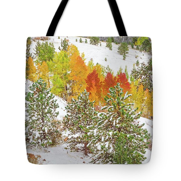 Colorado Is Stunningly Beautiful. Here's One Example Among Countless Others.  Tote Bag