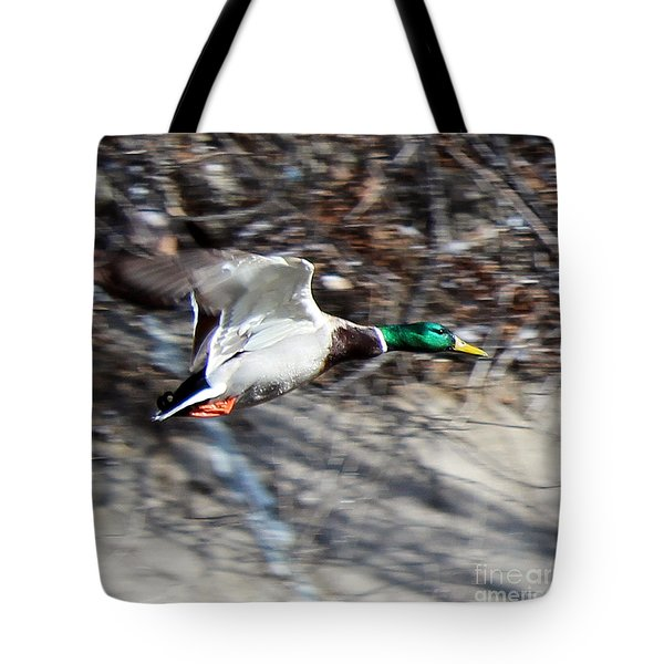 Colorado Mallard In Flight Tote Bag