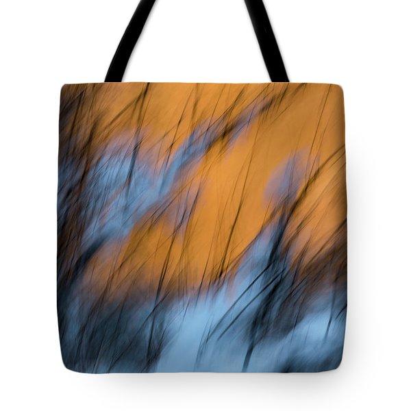 Colorado River Snow Banks Tote Bag