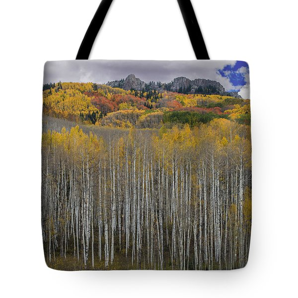 Colorado Splendor Tote Bag