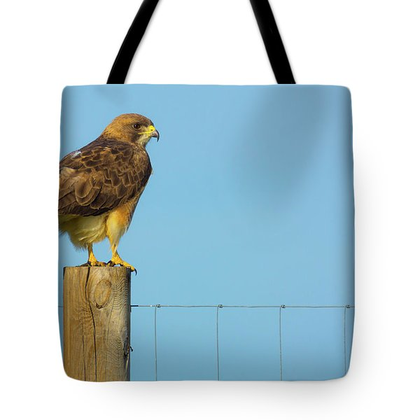 Tote Bag featuring the photograph Colorado Swainson's Hawk Perched by John De Bord