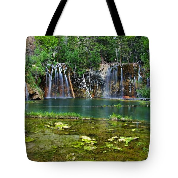Colorado Tropics Tote Bag