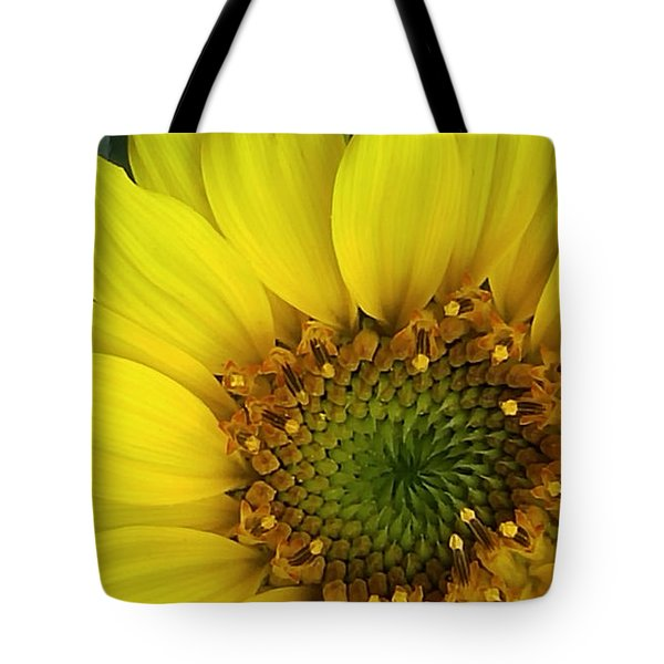 Colorado Wildflower Sunshine  Tote Bag