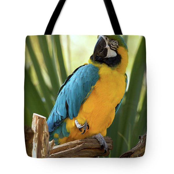 Colorful And Smart Tote Bag