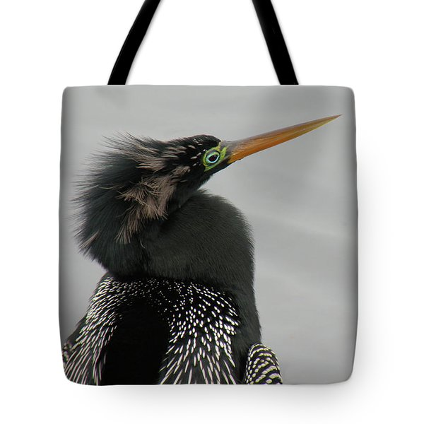 Colorful Anhinga Tote Bag