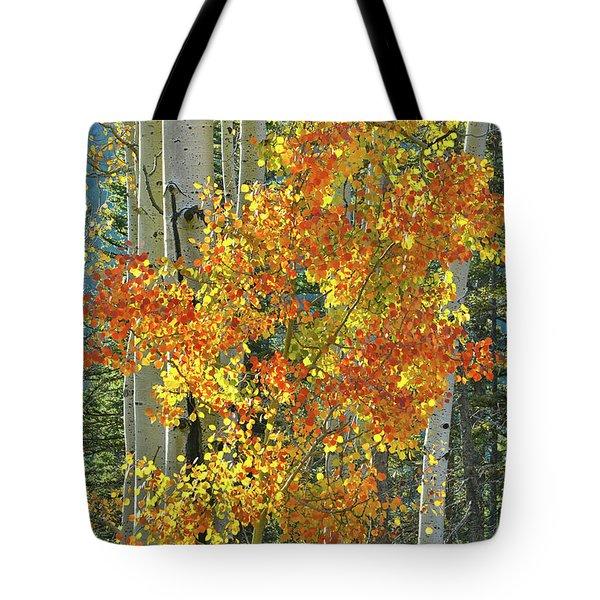 Colorful Aspen Along Million Dollar Highway Tote Bag