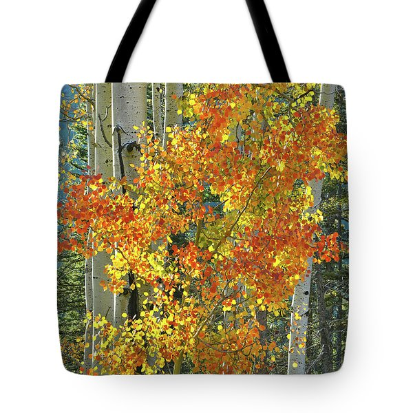 Colorful Aspen Along Million Dollar Highway Tote Bag