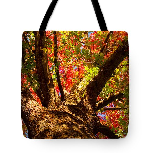 Colorful Autumn Abstract Tote Bag