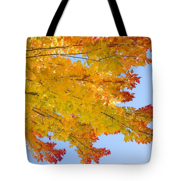 Colorful Autumn Reaching Out Tote Bag by James BO  Insogna