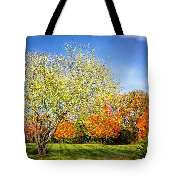 Colorful Backyard Scene Tote Bag