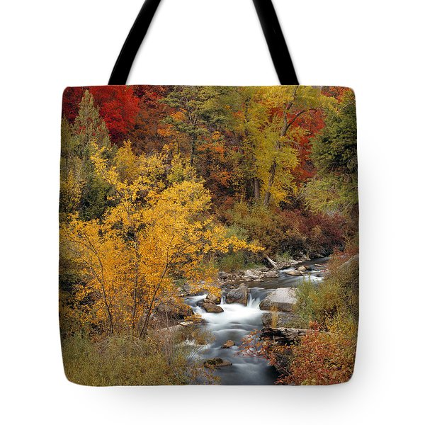 Colorful Canyon Tote Bag