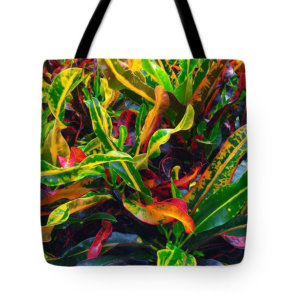 Colorful Crotons Tote Bag by Kay Gilley