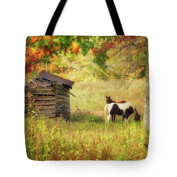 Colorful Display Tote Bag