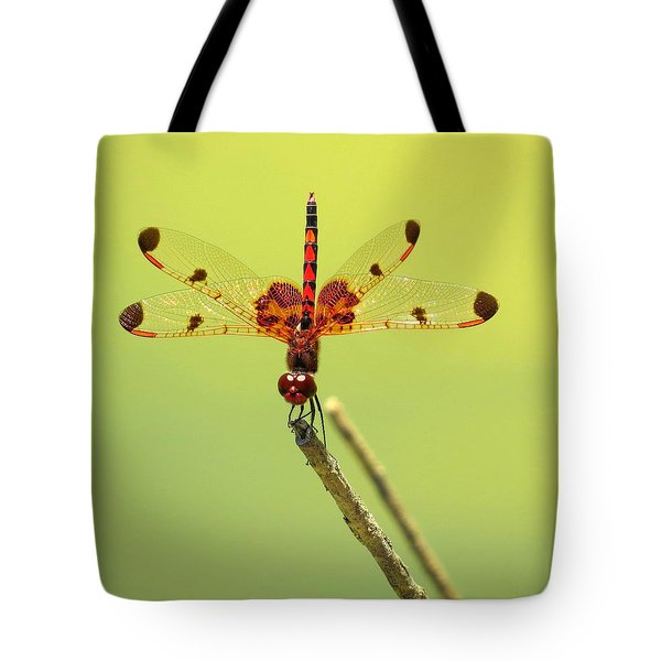 Tote Bag featuring the photograph Colorful Dragonfly 2 by Phyllis Beiser