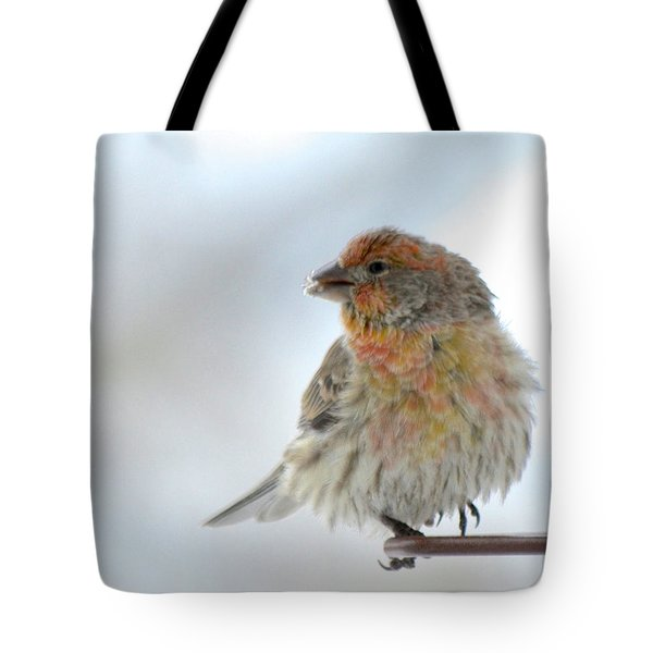 Colorful Finch Eating Breakfast Tote Bag