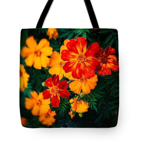Tote Bag featuring the photograph Colorful Flowers by Silvia Ganora