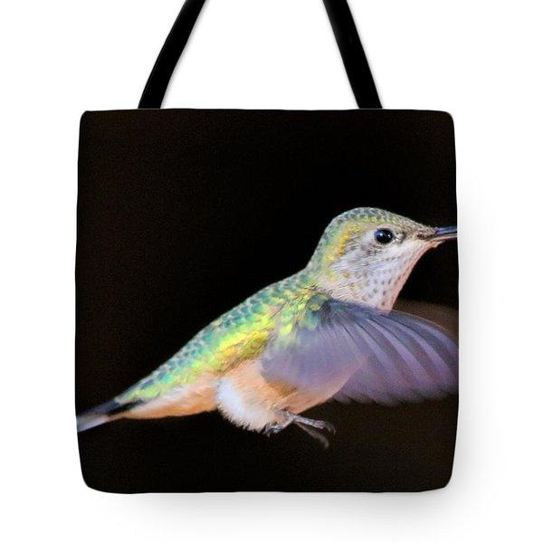 Colorful Hummingbird Tote Bag