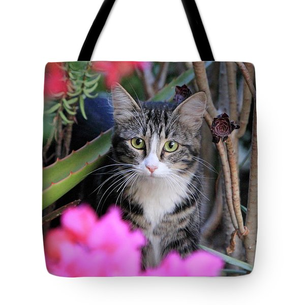 Colorful Kitty Tote Bag