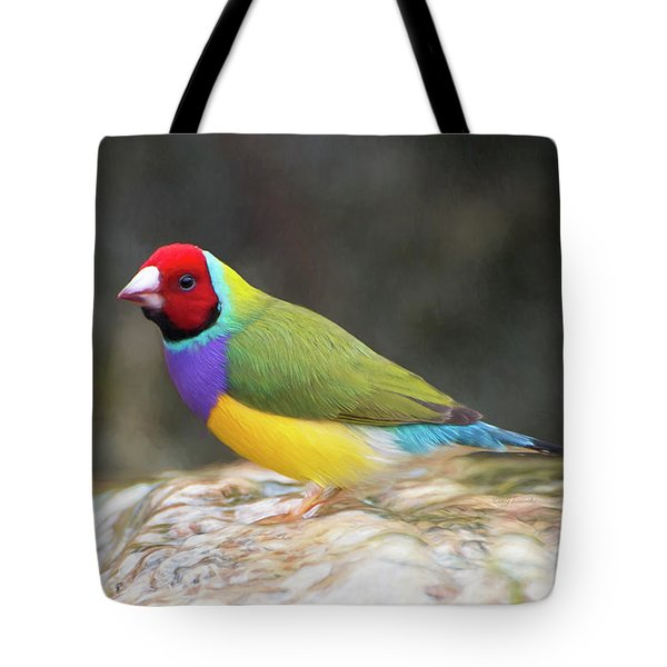 Tote Bag featuring the photograph Colorful Lady Gulian Finch  by Penny Lisowski