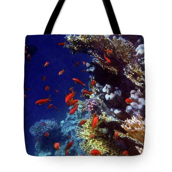 Colorful Lyretail Anthias Tote Bag
