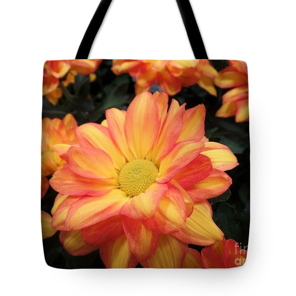 Tote Bag featuring the photograph Colorful Mums by Ray Shrewsberry