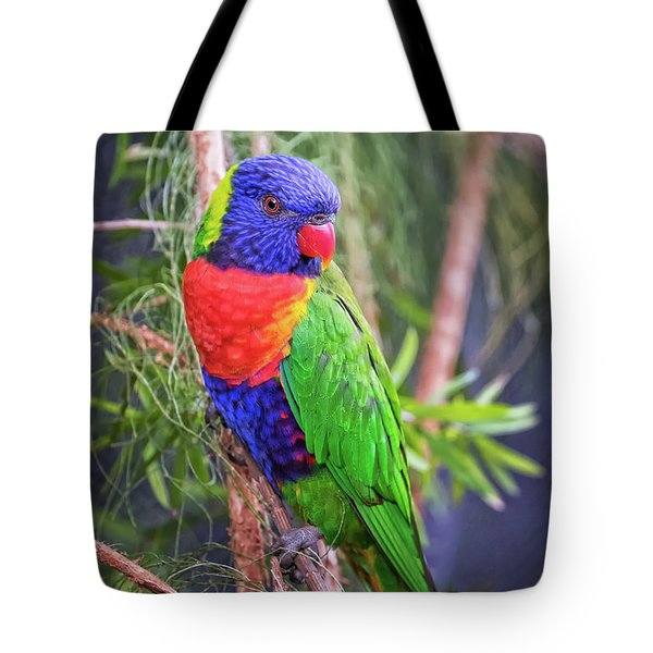 Colorful Parakeet Tote Bag by Stephanie Hayes
