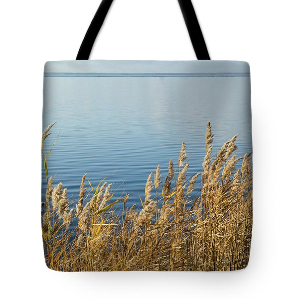 Colorful Reeds Tote Bag