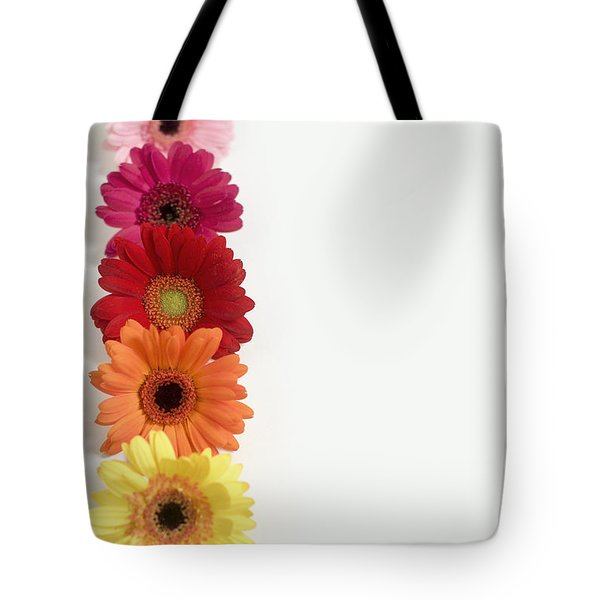 Colorful Row Of Gerbera Daisies Tote Bag
