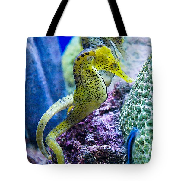 Colorful Seahorses Tote Bag