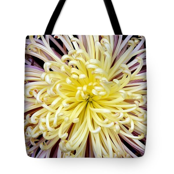 Colorful Spider Chrysanthemum   Tote Bag