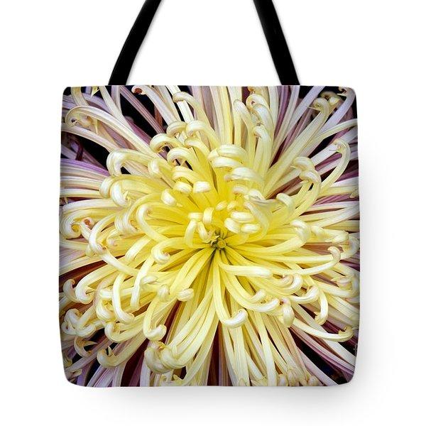 Colorful Spider Chrysanthemum   Tote Bag